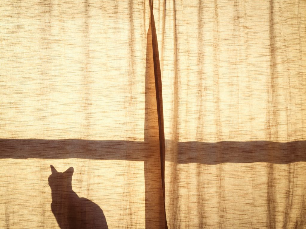 cotton-curtains